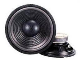 Master Audio CW1500  Woofer 380 mm Subwoofer 350W 4 ohm